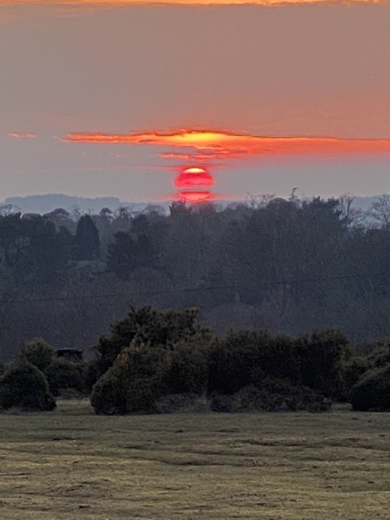 Richard New Forest - Photography skills have emerged in 'Run 4 Respite' - Day 19